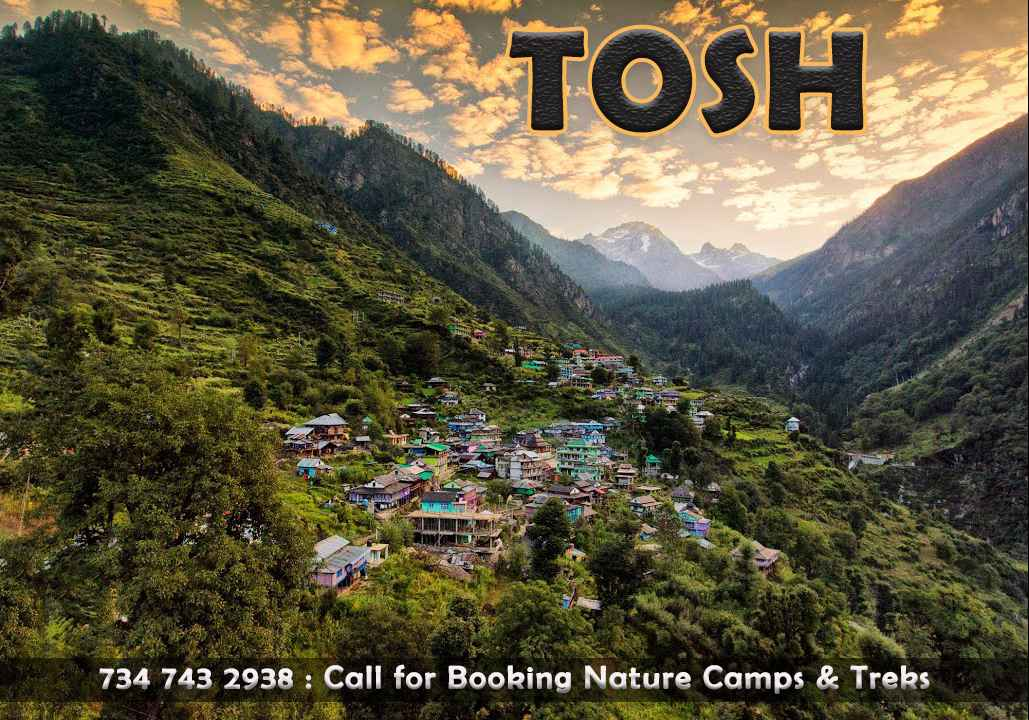 parvati valley trekking tours contact