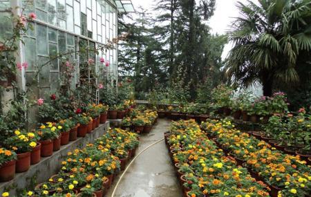 company garden mussoorie