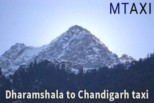 dharamshala chandigarh taxi