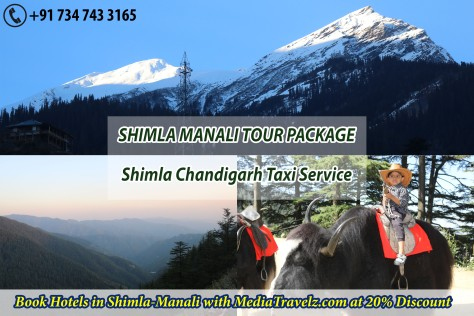 taxi from ludhiana to chandigarh delhi manali shimla